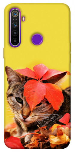 Чехол itsPrint Осенний котик для Realme 5