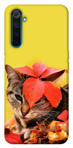 Чехол itsPrint Осенний котик для Realme 6 Pro