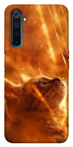 Чехол itsPrint Magic cat для Realme 6 Pro