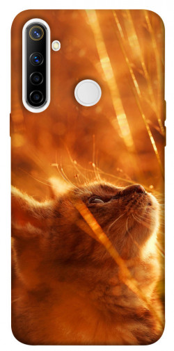 Чехол itsPrint Magic cat для Realme 6i
