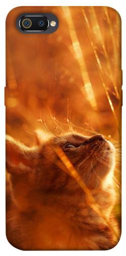 Чехол itsPrint Magic cat для Realme C2