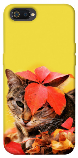 Чехол itsPrint Осенний котик для Realme C2