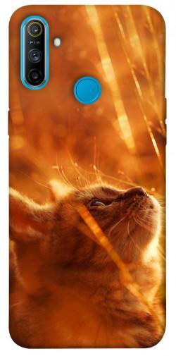 Чехол itsPrint Magic cat для Realme C3