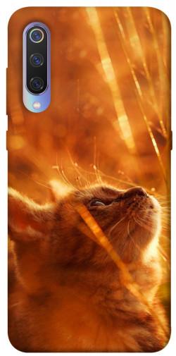 Чехол itsPrint Magic cat для Xiaomi Mi 9