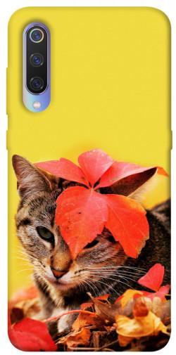 Чехол itsPrint Осенний котик для Xiaomi Mi 9