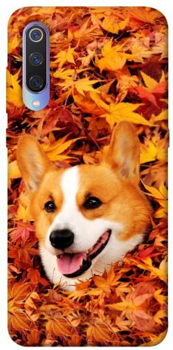 Чехол itsPrint Корги в листьях для Xiaomi Mi 9
