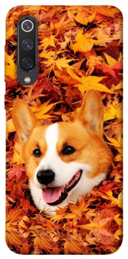 Чехол itsPrint Корги в листьях для Xiaomi Mi 9 SE