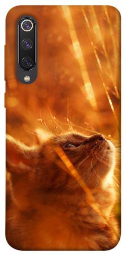 Чехол itsPrint Magic cat для Xiaomi Mi 9 SE