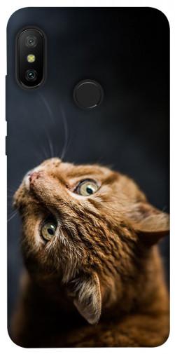 Чехол itsPrint Рыжий кот для Xiaomi Mi A2 Lite / Xiaomi Redmi 6 Pro