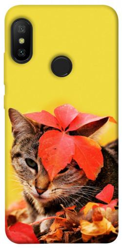 Чехол itsPrint Осенний котик для Xiaomi Mi A2 Lite / Xiaomi Redmi 6 Pro