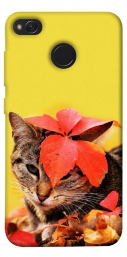 Чехол itsPrint Осенний котик для Xiaomi Redmi 4X