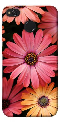Чехол itsPrint Осенние цветы для Xiaomi Redmi 4X