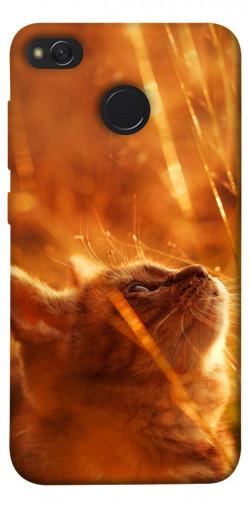 Чехол itsPrint Magic cat для Xiaomi Redmi 4X