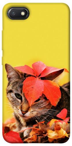 Чехол itsPrint Осенний котик для Xiaomi Redmi 6A
