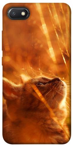 Чехол itsPrint Magic cat для Xiaomi Redmi 6A