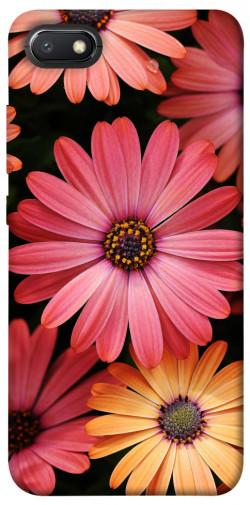 Чехол itsPrint Осенние цветы для Xiaomi Redmi 6A