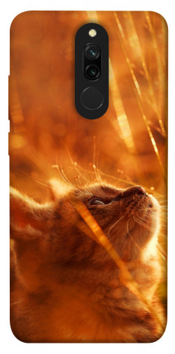 Чехол itsPrint Magic cat для Xiaomi Redmi 8