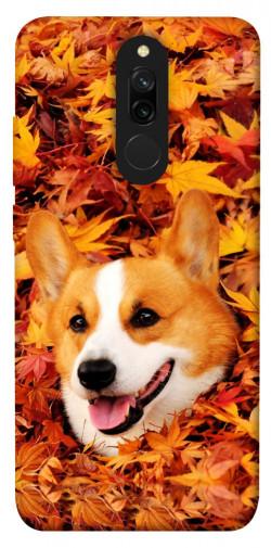 Чехол itsPrint Корги в листьях для Xiaomi Redmi 8