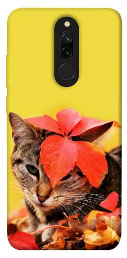 Чехол itsPrint Осенний котик для Xiaomi Redmi 8