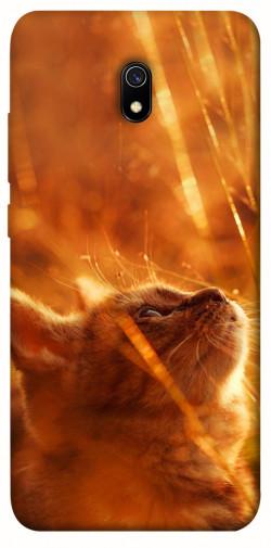 Чехол itsPrint Magic cat для Xiaomi Redmi 8a