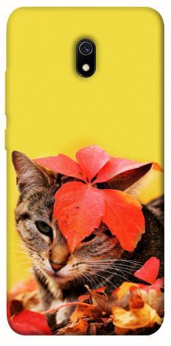 Чехол itsPrint Осенний котик для Xiaomi Redmi 8a