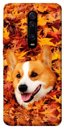 Чехол itsPrint Корги в листьях для Xiaomi Redmi K20 / K20 Pro / Mi9T / Mi9T Pro