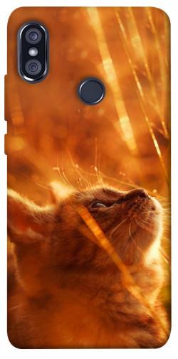 Чехол itsPrint Magic cat для Xiaomi Redmi Note 5 Pro / Note 5 (AI Dual Camera)