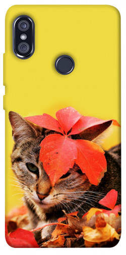 Чехол itsPrint Осенний котик для Xiaomi Redmi Note 5 Pro / Note 5 (AI Dual Camera)
