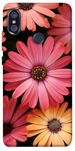 Чехол itsPrint Осенние цветы для Xiaomi Redmi Note 5 Pro / Note 5 (AI Dual Camera)