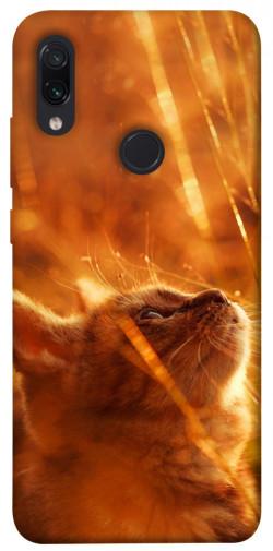 Чехол itsPrint Magic cat для Xiaomi Redmi Note 7 / Note 7 Pro / Note 7s