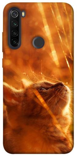 Чехол itsPrint Magic cat для Xiaomi Redmi Note 8T