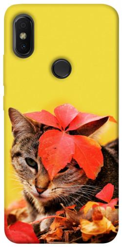 Чехол itsPrint Осенний котик для Xiaomi Redmi S2