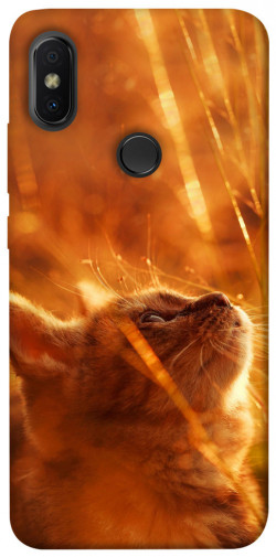 Чехол itsPrint Magic cat для Xiaomi Redmi S2