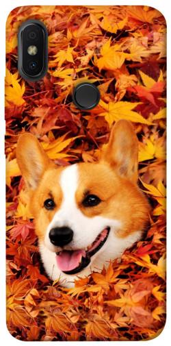 Чехол itsPrint Корги в листьях для Xiaomi Redmi S2