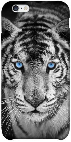 """Чехол itsPrint Бенгальский тигр для Apple iPhone 6/6s plus (5.5"""")"""