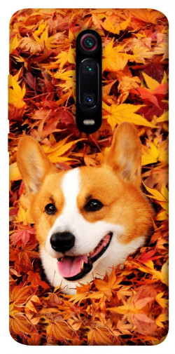 Чехол itsPrint Корги в листьях для Xiaomi Mi 9T Pro