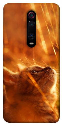 Чехол itsPrint Magic cat для Xiaomi Mi 9T Pro