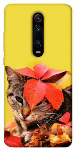 Чехол itsPrint Осенний котик для Xiaomi Mi 9T Pro