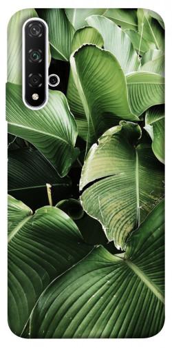 Чехол itsPrint Тропическая листва для Huawei nova 5T