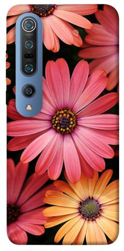 Чехол itsPrint Осенние цветы для Xiaomi Mi 10 / Mi 10 Pro