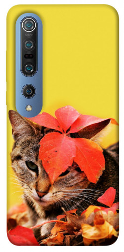 Чехол itsPrint Осенний котик для Xiaomi Mi 10 / Mi 10 Pro