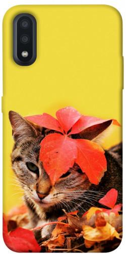 Чехол itsPrint Осенний котик для Samsung Galaxy A01