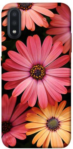Чехол itsPrint Осенние цветы для Samsung Galaxy A01