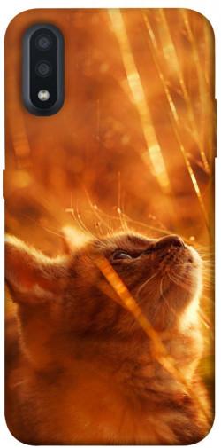 Чехол itsPrint Magic cat для Samsung Galaxy A01