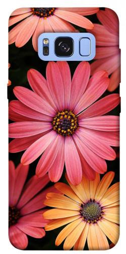 Чехол itsPrint Осенние цветы для Samsung G950 Galaxy S8