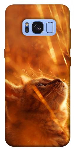Чехол itsPrint Magic cat для Samsung G950 Galaxy S8