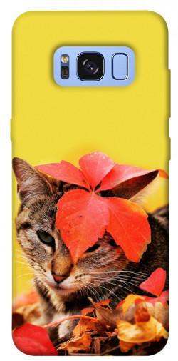 Чехол itsPrint Осенний котик для Samsung G950 Galaxy S8