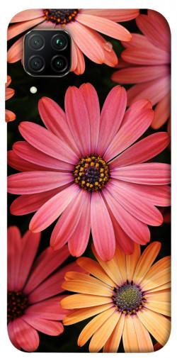 Чехол itsPrint Осенние цветы для Huawei P40 Lite