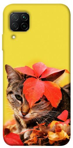 Чехол itsPrint Осенний котик для Huawei P40 Lite
