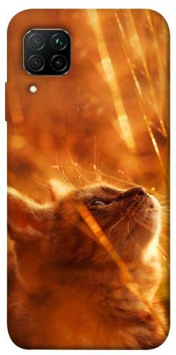 Чехол itsPrint Magic cat для Huawei P40 Lite